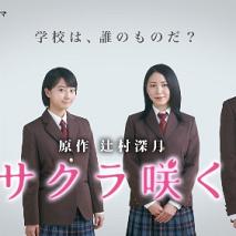 連続ドラマ 『サクラ咲く』