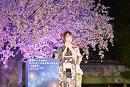 東京ドームシティ ウィンターイルミネーション~山紫水明~ イルミネーション点灯式