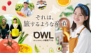 山田杏奈 「OWL」CMより